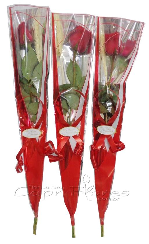 1579 ♥ 10 Rosas Unitárias para Brinde