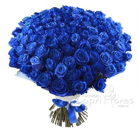 1844 ♥ Buquê Gigante de Rosas Azuis