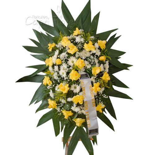 2164 Cora de Rosas Amarelas Dobradas