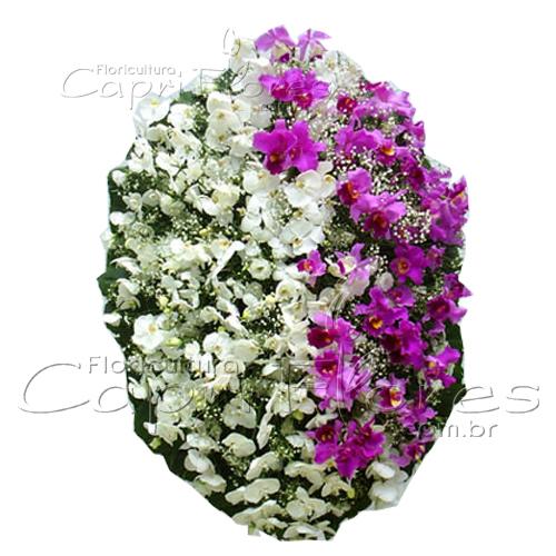 2857 Coroa de Flores Nobres com Orquídeas