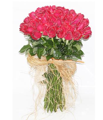 850 ♥ 100 Rosas Amor Sem Limites!