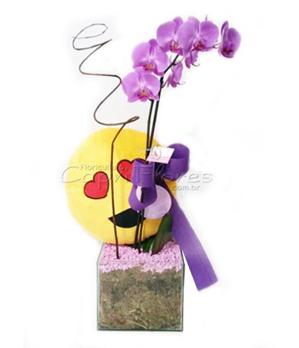 934 ♥ Orquídea + Emoji